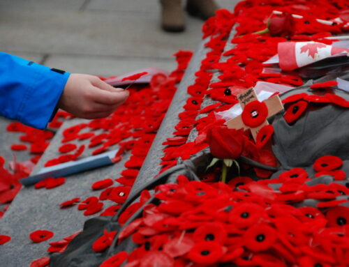 Remembrance Day hours at FVREB